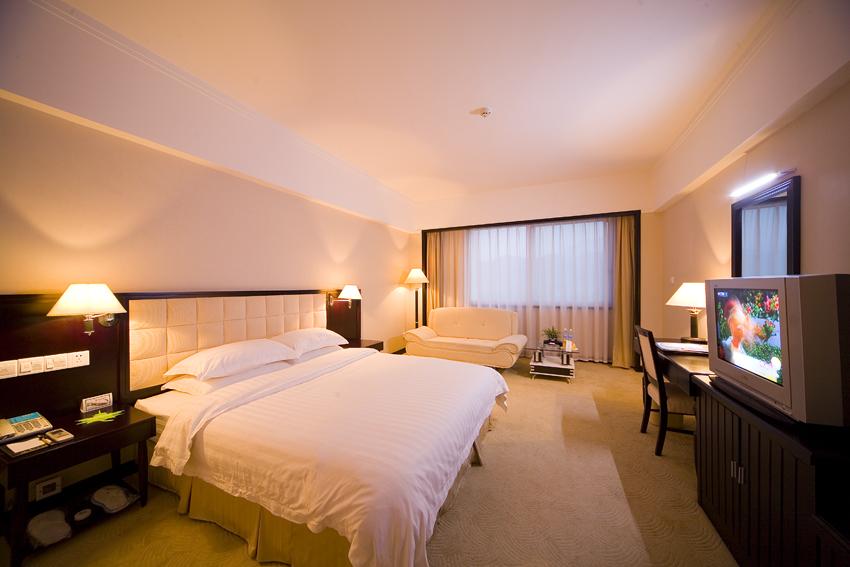 蓝天大酒店大床房