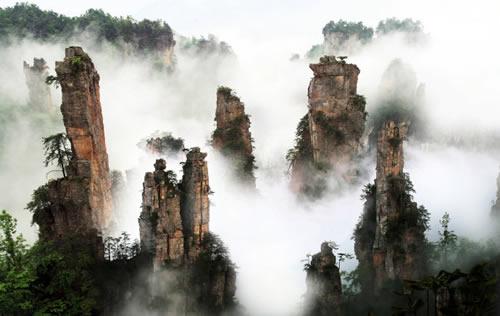 竞博jbo官网登录国家森林公园、大峡谷、玻璃桥、天门山四日游